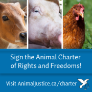 Sign the Charter