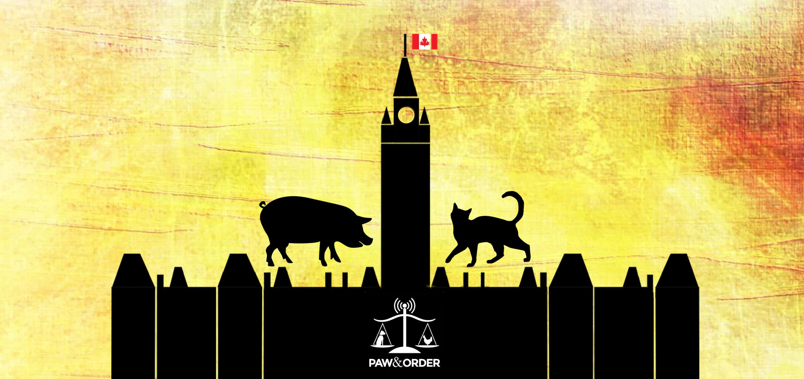 #2: What Does Canadian Federalism Mean for Animal Law?